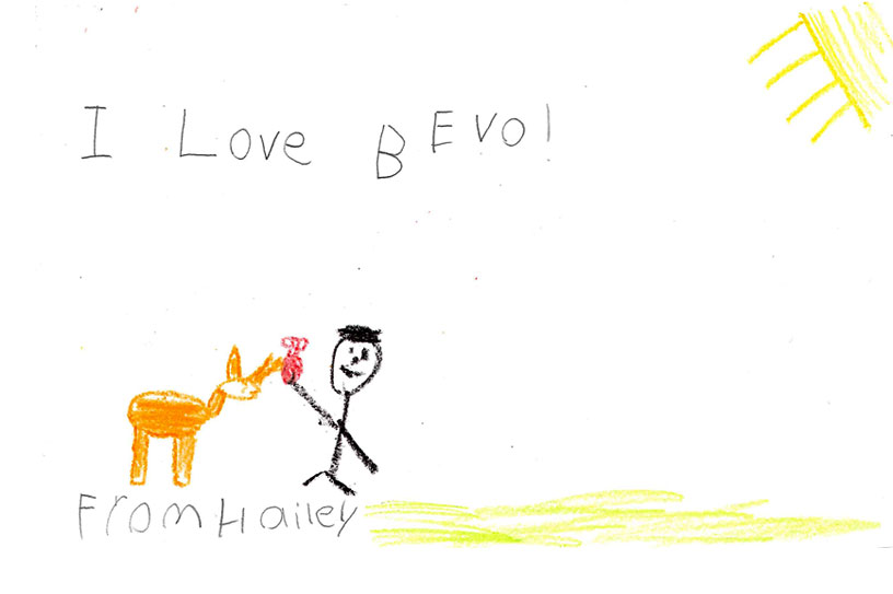 An original drawing of Bevo from Hailey